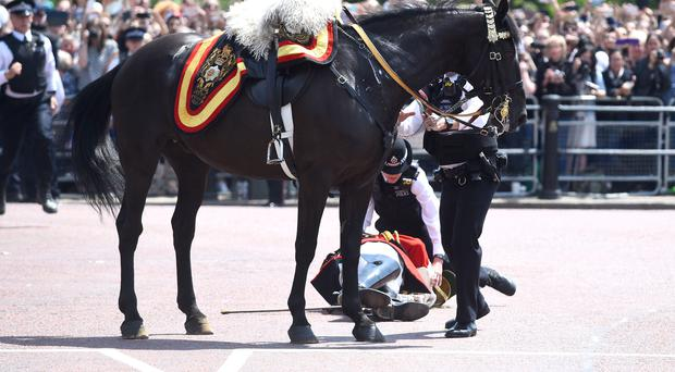 Lord Guthrie after he fell off his horse in front of Buckingham Palace (PA)