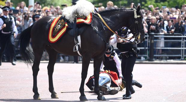 Lord Guthrie after falling off his horse in front of Buckingham Palace (PA)