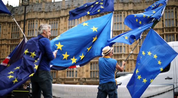 Anti-Brexit demonstrators campaign outside the Houses of Parliament in London (Yui Mok/PA)