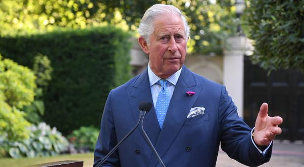 The Prince of Wales addresses the reception (Chris Ratcliffe/PA)