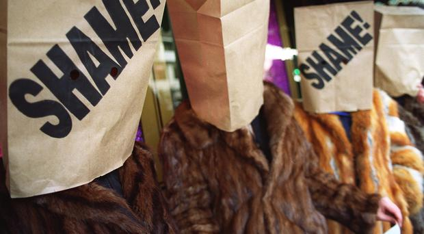 Members of People for the Ethical Treatment of Animals (PETA) wear furs topped with paper bags lettered 'Shame', in a protest outside the Harrod's store in London.
