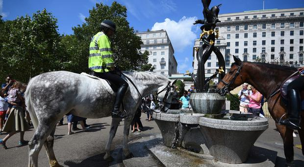 Police officers water their horses in Green Park in central London (Kirsty O'Connor/PA)
