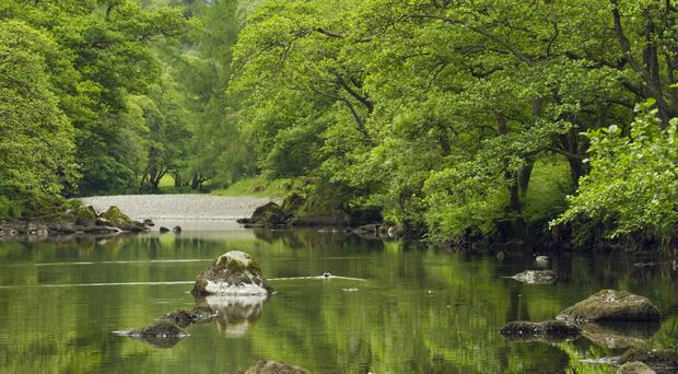 The River Derwent is one of the rivers being helped in the National Trust project (Simon Fraser/National Trust/PA)
