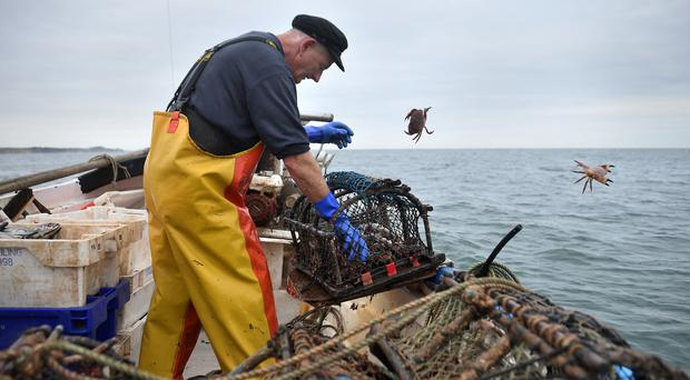 Crab fisherman John Lee hauls pots from his boat off the coast of Cromer in Norfolk (Joe Giddens/ PA)