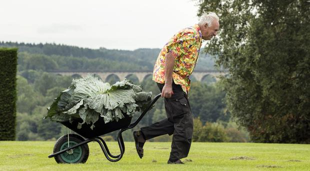 Ian Neale with his winning cabbage (Danny Lawson/PA)