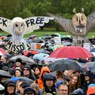 Campaigners came out despite the rain (Dominic Lipinski/PA)