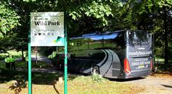 The jury in the trial of Russell Bishop arrive at Wild Park in Brighton (Gareth Fuller/PA)