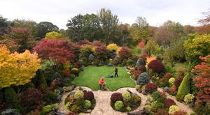 Tony and Marie Newton tend to their Four Seasons garden as it bursts into autumnal colour at their home in Walsall in the West Midlands (Joe Giddens/PA)