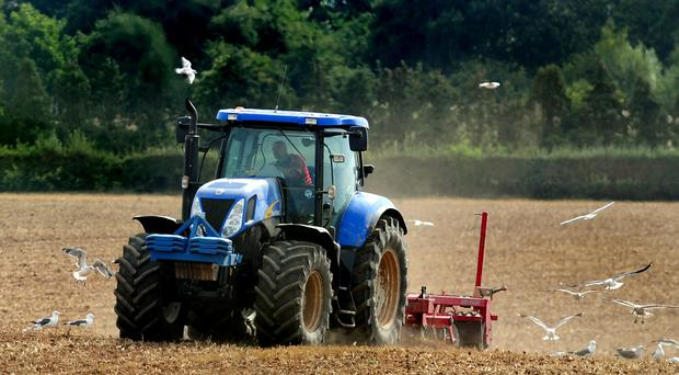 Protestant farmers are more likely to farm on large farms than their Catholic counterparts, official figures have shown. (stock) (Rui Vieira/PA)