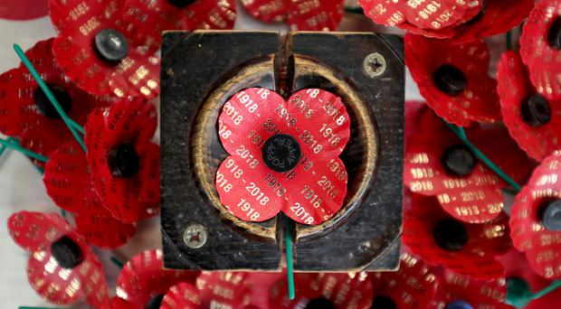 Poppies as the 100th anniversary of the armistice approaches (Jane Barlow/PA)