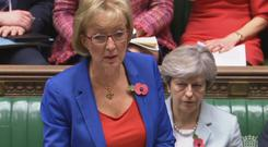 Andrea Leadsom said there was time for more to be done on the Brexit deal before the European Council meeting on November 25 (PA)