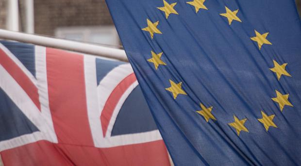 The number of major business deals in the UK could be more than halved in the event of a no-deal Brexit, a law firm has said. (stock picture)