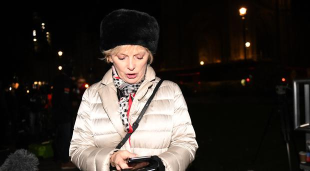 Conservative MP Anna Soubry accused police of ignoring abuse hurled at politicians and journalists outside Parliament (David Mirzoeff/PA)