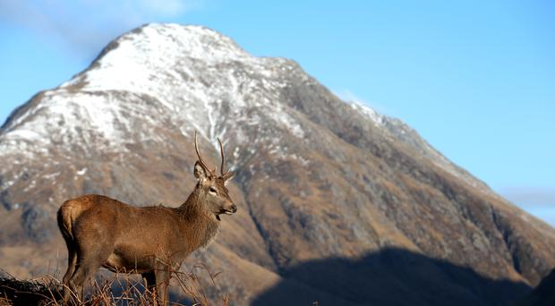 Hydro-power schemes are being considered for Glen Etive (Jane Barlow/PA)