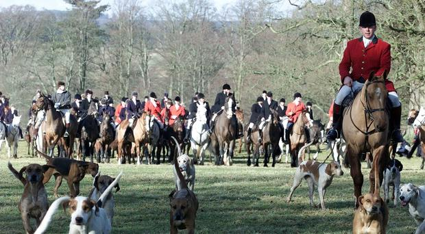 Plans have been put forward to close any 'potential loopholes' in the fox hunting ban (Owen Humphreys/PA)