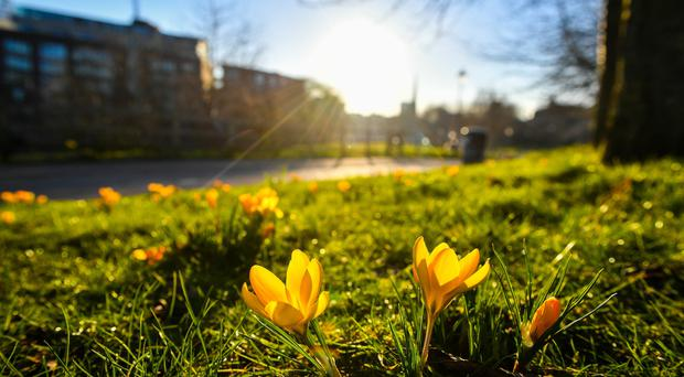 Northern Ireland could see temperatures rise to near record levels for February this weekend, according to the Met Office. (Ben Birchall/PA)