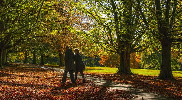 Walking for 30 minutes every morning has long-lasting effects on blood pressure, experts say (Peter ByrnePA)