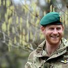 The Duke of Sussex was made Captain General of the Royal Marines in 2017 (Finnbarr Webster/PA)
