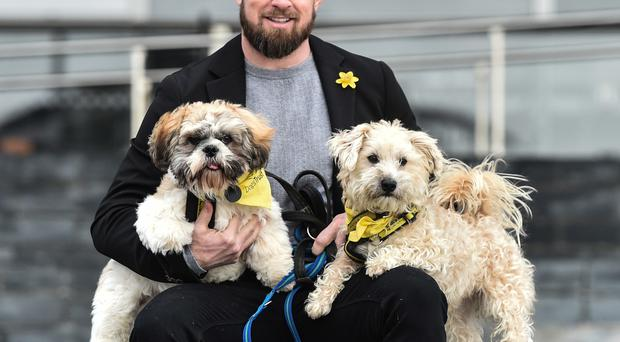 Rugby player Shane Williams holds Coffee, a six-month-old Shih Tzu, left, and Hercules, a five-year-old terrier, right, both yet to find homes and are currently with the Dogs Trust, during a photo call at the Senedd in Cardiff Bay, Cardiff, where plans are unveiled for building work at Dogs Trust Cardiff, due to open in 2021 (Ben Birchall/PA)