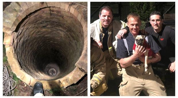Three-year-old Kiki was rescued after falling 40 feet down the well (Kent Fire and Rescue/PA)