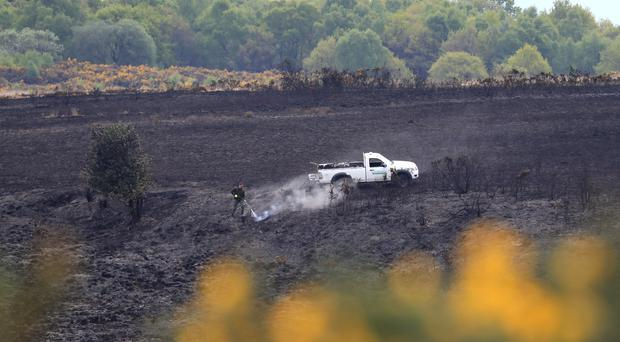 A forest ranger at the scene of a fire at Ashdown Forest in East Sussex (Gareth Fuller/PA)