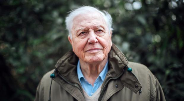 Sir David Attenborough has warned over plastic use (Polly Alderton/PA)