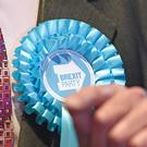 A rosette on the jacket of Brexit Party leader Nigel Farage (PA)