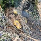 Some of the grenades found by the workers (SPEN/PA)