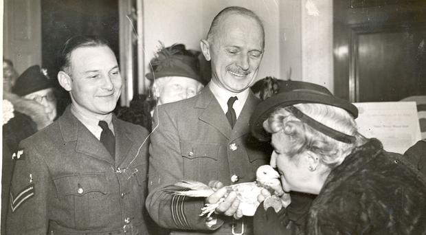 Gustav the pigeon receiving his Dickin Medal in 1944 (PDSA/PA)