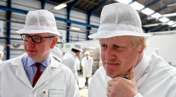 Boris Johnson and Michael Gove as they tour of the DCS Group, Stratford-upon-Avon, during the referendum campaign (Andrew Parsons/PA)