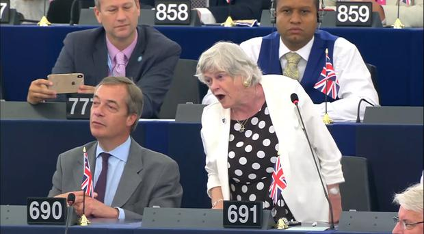 Brexit Party MEP Ann Widdecombe, stood next to Nigel Farage, during her speech to the European Parliament (EuropaTV/PA)