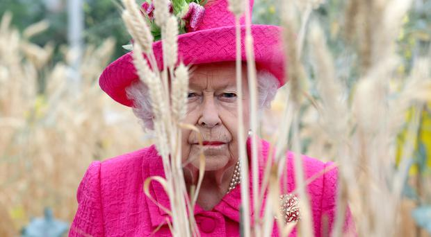 The Queen Insists She's 'Still Perfectly Capable Of Planting A Tree'