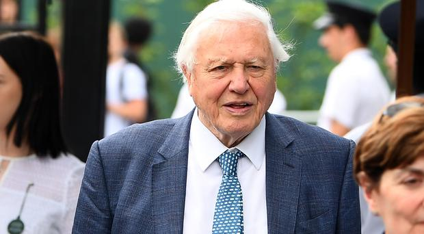 Sir David Attenborough on day 11 of the Wimbledon Championships at the All England Lawn Tennis and Croquet Club (Victoria Jones/PA)