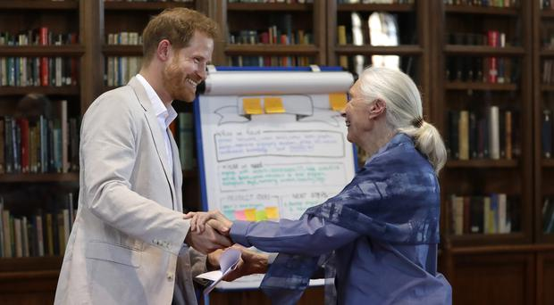 The Duke of Sussex with Dr Jane Goodall (Kirsty Wigglesworth/PA)