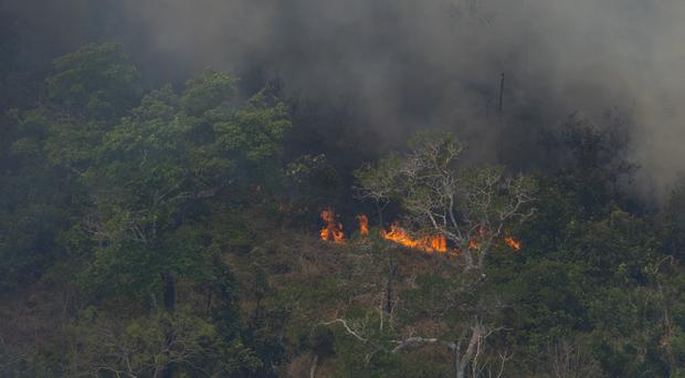 Wildfires consume an area of forest in Brazil (Victor R Caivano)
