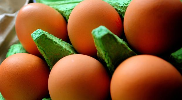 Eggs are a source of choline (PA)
