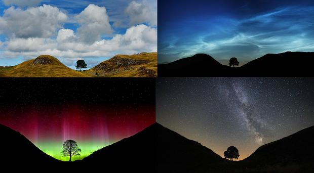 Undated pictures of the tree at Sycamore Gap, Northumberland, taken (clockwise from top left) in daylight, with noctilucent clouds, the Milky Way and the Northern Lights (OWen Humphreys/PA)