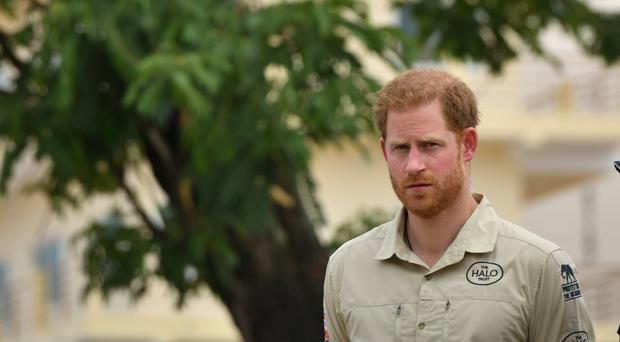The Duke of Sussex in front of the Diana Tree in Huambo, Angola (Dominic Lipinski/PA)