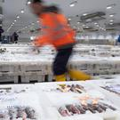 The fishing sector in Scotland could be faced with a £34 million a year bill to export seafood to the EU. (Michal Wachucik/PA Archive/PA Images)