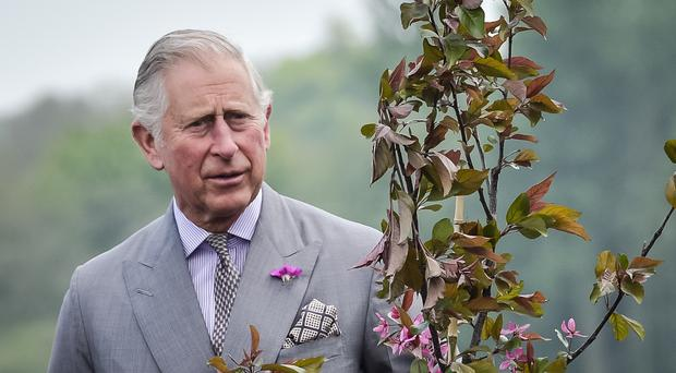 The Prince of Wales plants a tree during a visit to the Mildren Homes development on Duchy of Cornwall land in Fordington, Dorset (Ben Birchall/PA)