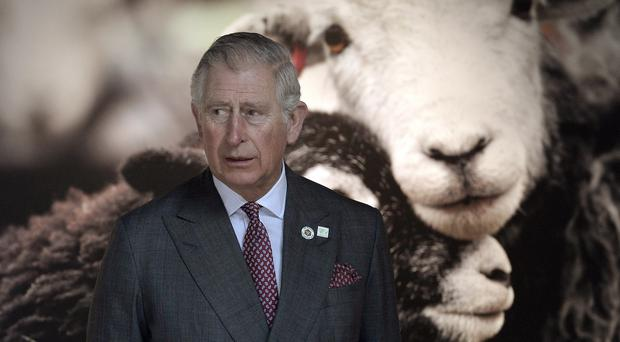 The Duke of Rothesay is known for his love of the environment (Owen Humphreys/PA)