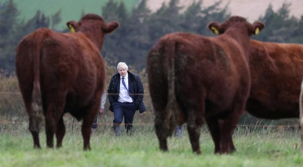 Protecting food standards is paramount for next government, farmers warn (Andrew Milligan/PA)