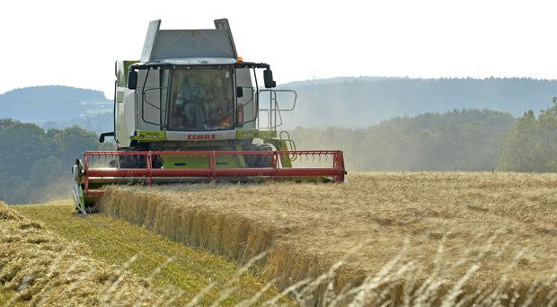 A combine harvester in a field (Owen Humphreys/PA)