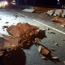 Some of the damage to the central reservation, after a crane overturned and crashed over both sides of the carriageway of the M25 at Junction 27 with the M11 (@EP_RPU_South/PA) showing