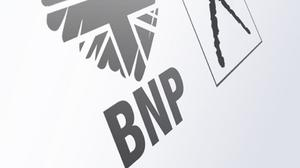 The BNP was removed by the Electoral Commission for failing to submit the required annual notification and £25 fee