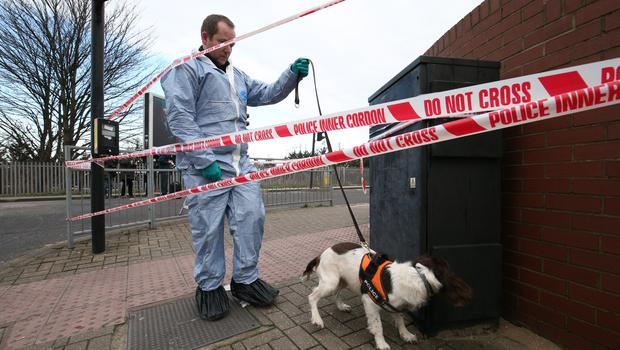 Police with a sniffer dog at the junction of New Road and High Road near to the scene in Seven Kings (Jonathan Brady/PA)