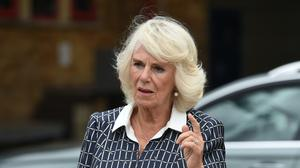 The Duchess of Cornwall (Eddie Mulholland/The Daily Telegraph)