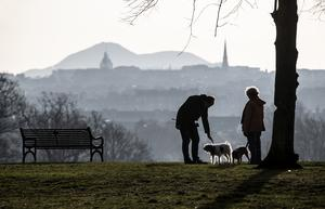 Dog walkers have been encouraged to clean up after their pets (Jane Barlow/PA)
