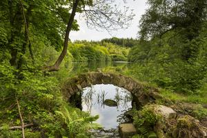The project includes work to improve the surroundings of Eavestone Lake (National Trust/Chris Lacey/PA)