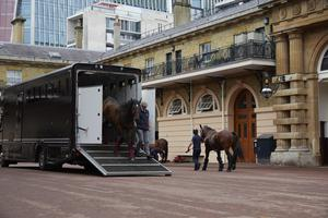The Queen's horses return to the Royal Mews ((Royal Collection Trust/ Her Majesty Queen Elizabeth II 2020/PA)